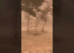 Tempeste di grandine e sabbia nel deserto: video dall'Arabia