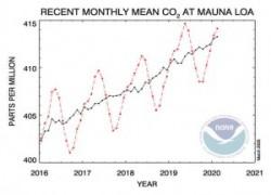 immagine notizia coronavirus e clima il 2020 sar il primo anno senza nuovo record di co2