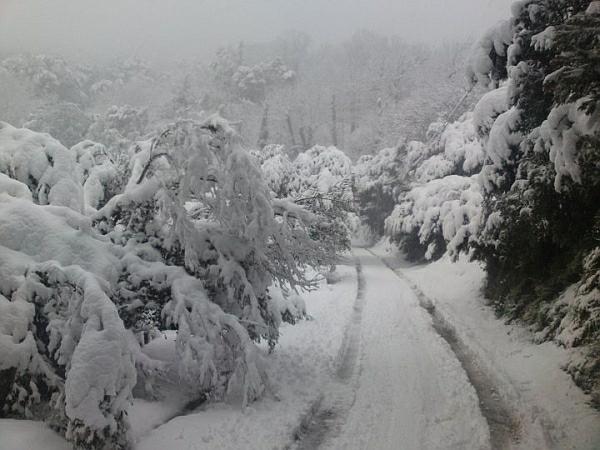 immagine 3 del capitolo 1 del reportage grande neve in corsica apoteosi bianca sulle zone del centro nord