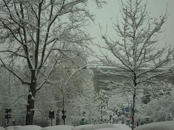 immagine 1 del capitolo 1 del reportage befana davvero speciale calza piena di neve