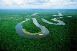 immagine articolo sud america siccita 2010 mette a rischio la foresta amazzonica