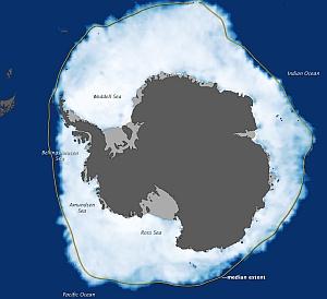 immagine articolo massima estensione ghiacci antartide conferme nasa