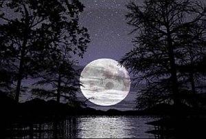 immagine articolo super luna piena uno spettacolo imperdibile in cielo
