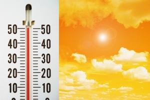 immagine news caldo-da-record-25-giugno-2007-punte-massime-47-gradi