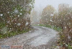 immagine news prima-neve-in-corea-in-anticipo-di-16-giorni