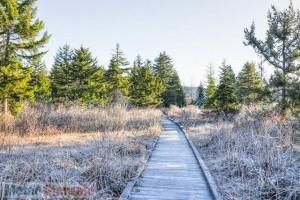 immagine news meteo-domani-peggiora-irrompe-freddo-prime-nevicate-a-quote-basse-al-nord