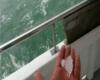 Ravenna, grandine grosse dimensioni in mare