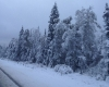 Russia: prima neve negli Urali e a Ekaterinburg