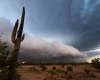 L'incredibile meteo dell'Arizona. Video spettacolare e Foto Gallery
