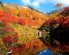 Dall'America al Giappone è tempo di foliage