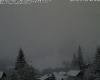 Trentino Alto Adige: in atto fitte nevicate