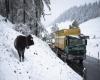 Bufere di neve provocano il caos in Baviera: danni, disagi e 4 feriti