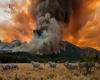 """Giganti"" in fiamme a Los Alerces, inferno in Patagonia"