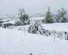 """""""Polar Blast""""! primo gelo e prima neve nell'Europa centro-orientale"""