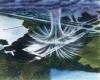 Downburst, il vento da temporale con raffiche da uragano. Furia distruttiva