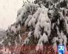 Neve anche in Pakistan! Imbiancata Quetta. VIDEO TG