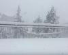 Marche sotto la neve, oltre mezzo metro di neve su Urbino. Nevicherà ancora
