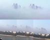 In Cina spunta la città galleggiante fra le nubi