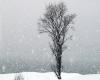 Inverno al giro di boa: siamo giunti a un bivio importante. Ancora freddo o lenta decadenza?
