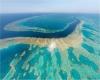 Grande Barriera Corallina australiana a rischio morte, sbiancamento super