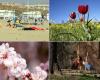 Com'è iniziata la primavera in Europa? Beh, in molti Paesi con sole e alte temperature