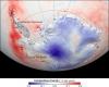 Antartide: rilevato un incremento della copertura vegetale. Che significa?
