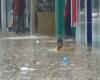 Asia meridionale, si affaccia il terribile monsone: inondazioni, già tante vittime