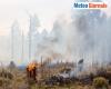 Dilagano gli incendi: colpa dell'uomo, del meteo estremo con la siccità ed il caldo