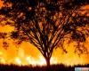Meteo Australia, da un estremo all'altro: caldo atroce, grandinate, incendi e fumo