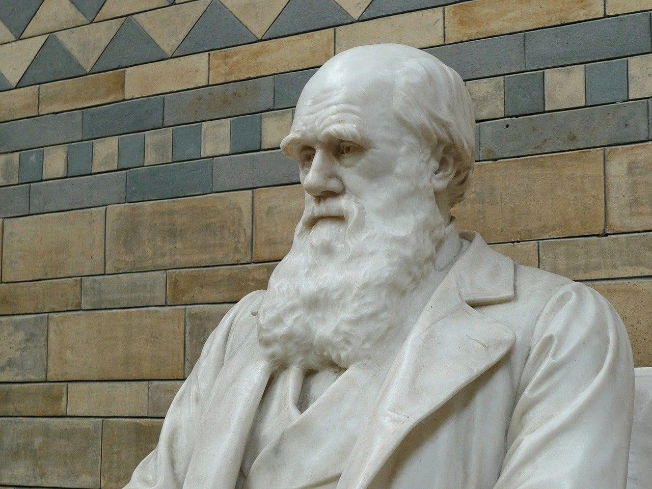 darwin 623194 1280 - Evoluzione: cosa c'è di concreto in tutto questo?