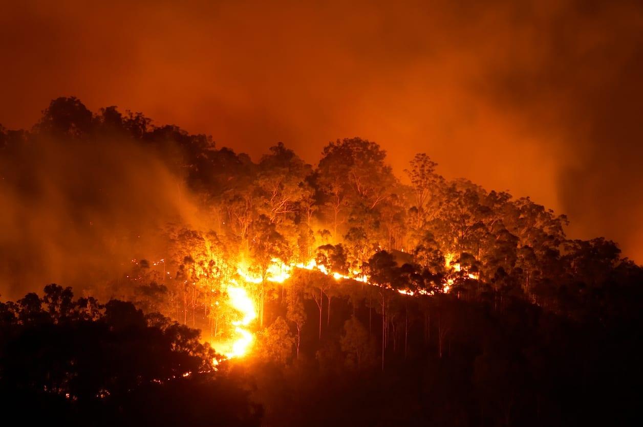 iStock 157484382 - Gli incendi non uccidono il nostro Pianeta