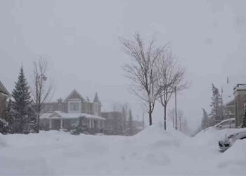 neve toronto 350x250 - Islanda, tremende tempeste di neve. Un metro e mezzo di neve. Video meteo