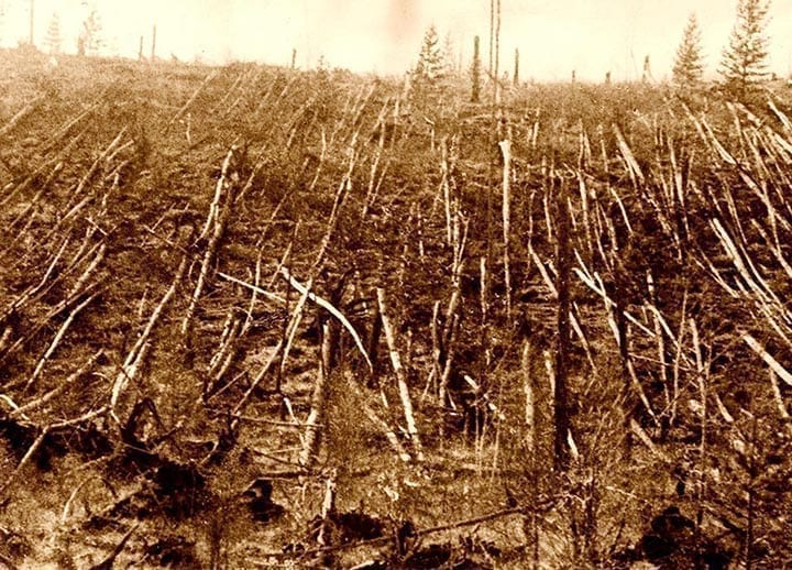 meteorite Tunguska foresta rasa al suolo - Meteoriti, sono un pericolo devastante, ce lo sottolinea il disastro Tunguska, ulteriori scoperte