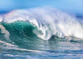 iStock 689234612 350x250 - Gli oceani assorbono una buona parte del carbonio causato dagli incendi