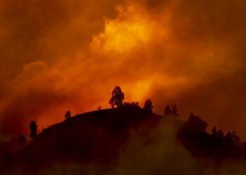 mag1 28 scaled 1 350x250 - Clima, sempre peggio: termina il quinquennio più caldo di sempre