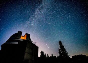 mag1 33 350x250 - Broccoli romani e fotocamera spaziale più grande del mondo: cosa hanno in comune?