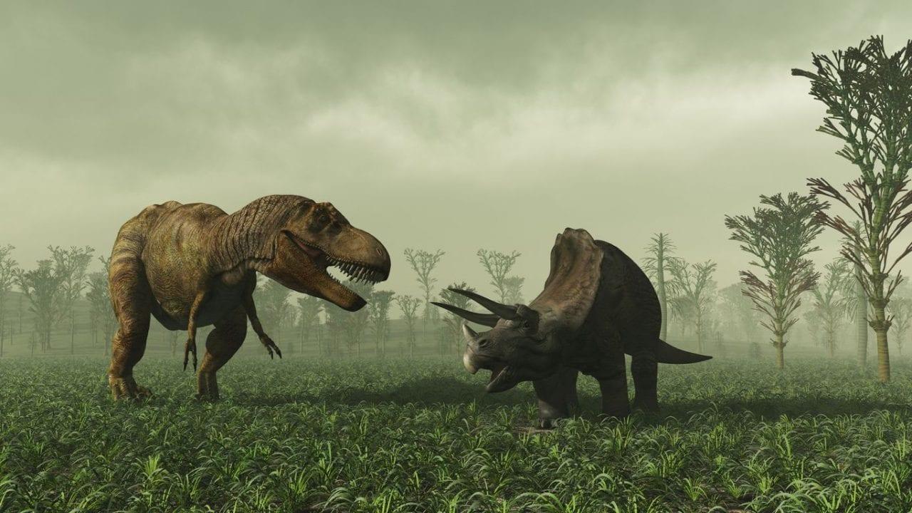 mag1 59 scaled 1 - Evento Pluviale Carnico: scoperta l'estinzione di massa che diede il via al dominio dei dinosauri