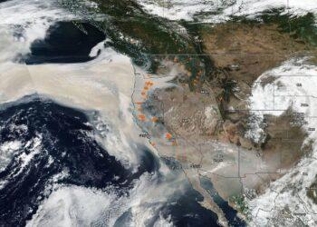 mag1 63 350x250 - Prevenire un'altra pandemia richiede cambiare il Mondo
