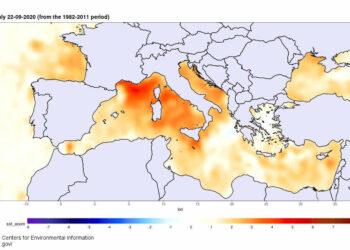 mare 1 350x250 - Burrasca di vento nel weekend, raffiche oltre 100 orari e super mareggiate