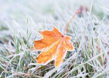 Gelo a fine novembre, avveniva più di frequente