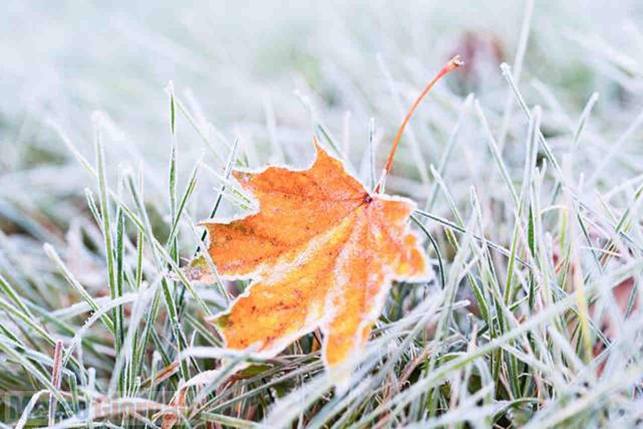 gelo fine autunno - ONDATA di GELO dalla Russia a fine novembre: un caso estremo record