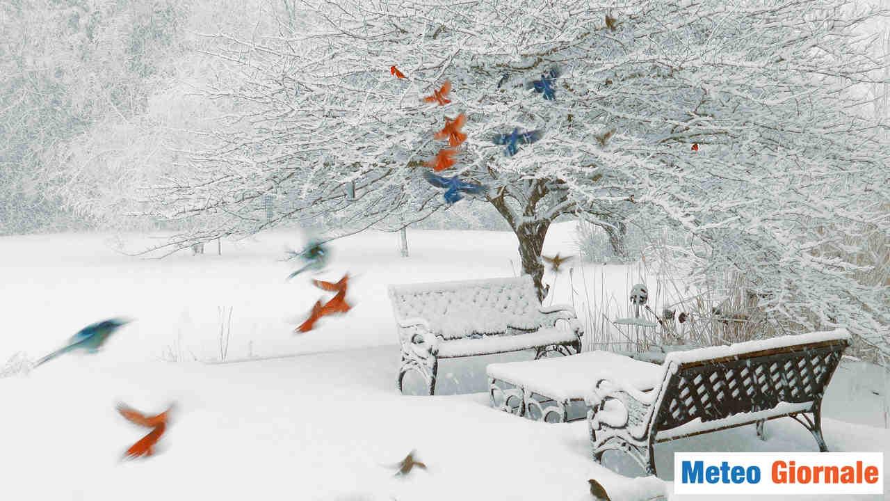 meteo giornale 00218 - Meteo invernale, arriva altra NEVE per Capodanno. Gli ultimi aggiornamenti
