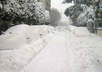 Possiamo vedere come si presentava Bologna il 2 febbraio 2012 dopo due giorni di nevicata pressoché ininterrotta. Foto di Pasquale Cicciu.