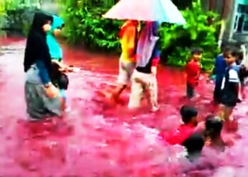 alluvione dacqua rossa 350x250 - Gli oceani assorbono una buona parte del carbonio causato dagli incendi