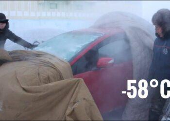 siberia 60c come far partire una 350x250 - Incredibile in Siberia: trovato Orso delle Caverne dell'era glaciale