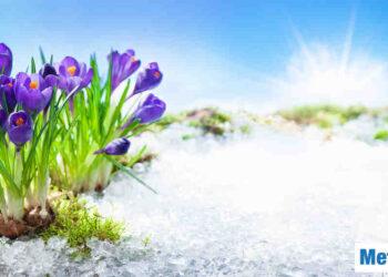 La primavera parte con grande freddo invernale. Non è un evento raro