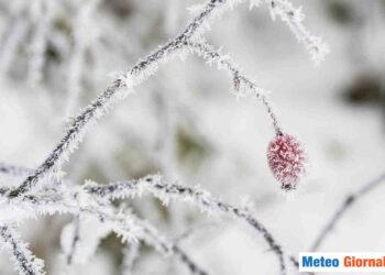 Non solo neve nel weekend d'inizio primavera, ma anche brinate tardive