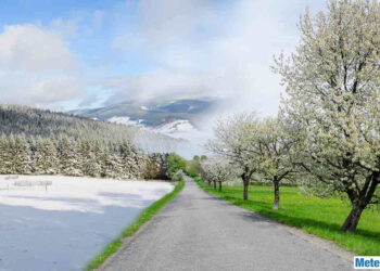 La neve sugli alberi in fiore. Scenario frequente anche in pianura