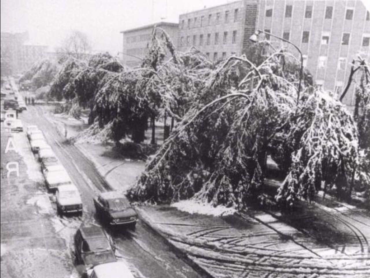 neve ottobre 1979 - Nevicata del 25 aprile a Torino, la più tardiva in assoluto