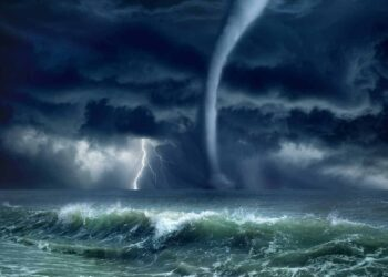 Immagine di tromba marina